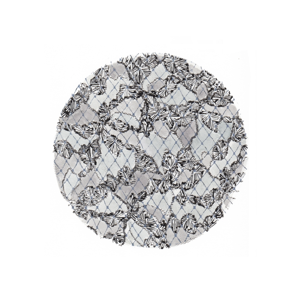 Circle Print (7/20)